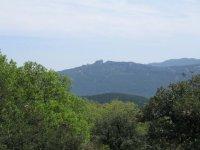 Farm campsite «Au Cœur du Chêne Vert »
